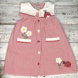 Vintage Ladybug 🐞 Dress